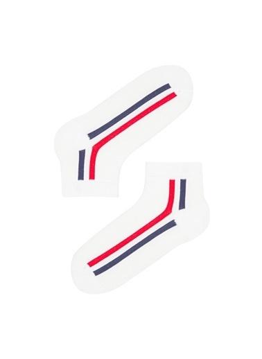 Penti Erkek Çocuk Stripes 2Li Patik Çorap Renkli